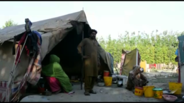 The condition of Pakistan's nomad tribes
