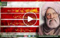 Bullah Shah Sufi of mankind