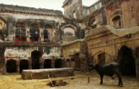 Lahore's dying Sikh heritage